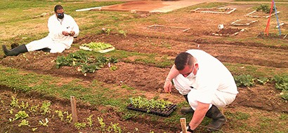 Urban Farming Program Produces Fresh Herbs, Sets Standards for Correctional Education
